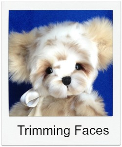 Trimming Teddy Bear Faces
