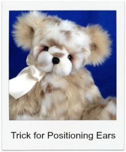 Tip for Positioning the Ears